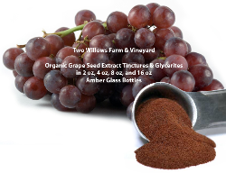 Organic Grape Seed Extract Tinctures and Glycerites in 2 oz, 4 oz, 8 oz, and 16 oz, Bottles
